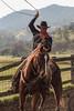 12-20_Yolo_Land_&_Catttle_December_20,_2012IMG_4123untitled