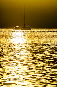 Golden Cowichan Bay