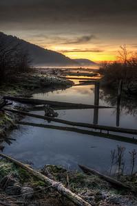 Cold Estuary Morning, Cowichan Bay