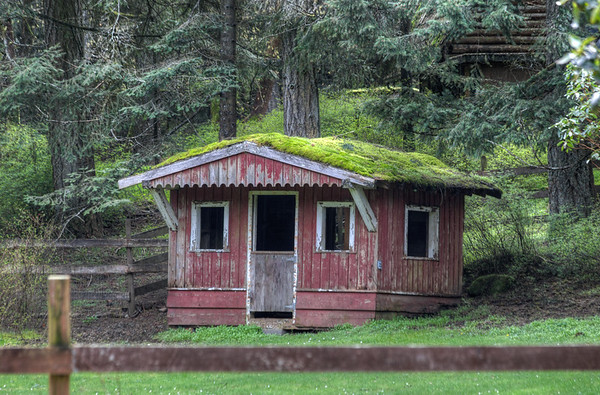 moss covered outbuilding vancouver island farm british columbia canada