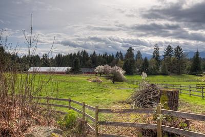 Pastoral Landscape And Barn In Spring - Cedar, Vancouver Island, British Columbia, Canada