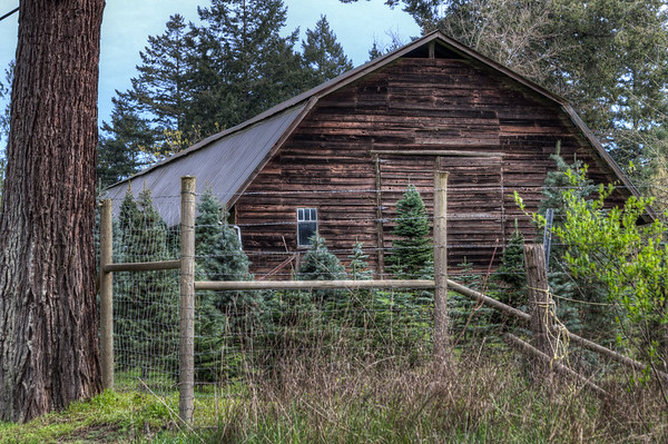 Wood Barn - Vancouver Island, British Columbia, Canada