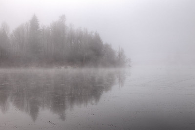 Ethereal Winter - Cowichan Valley, British Columbia, Canada
