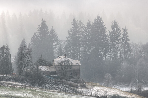 Foggy Winter Farm Scene - Cowichan Valley, Vancouver Island, British Columbia, Canada