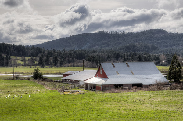 Red Barn - Spring In The Cowichan Valley, Vancouver Island, British Columbia, Canada