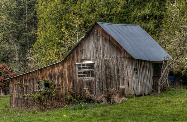 Crooked Weathered Barn - Vancouver Island Farm, British Columbia, Canada