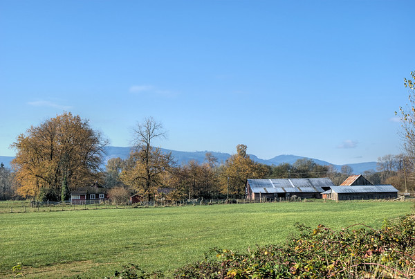 Farm - Cowichan Valley, BC, Canada