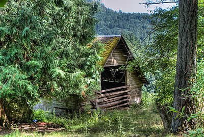 "Farm - Genoa Bay, BC, Canada Visit our blog ""The Hidden Barn"" for the story behind the photo."