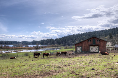 Soggy Bottom Farm - Vancouver Island, British Columbia, Canada