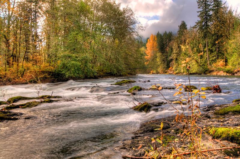 PBP_4056 Cowichan River