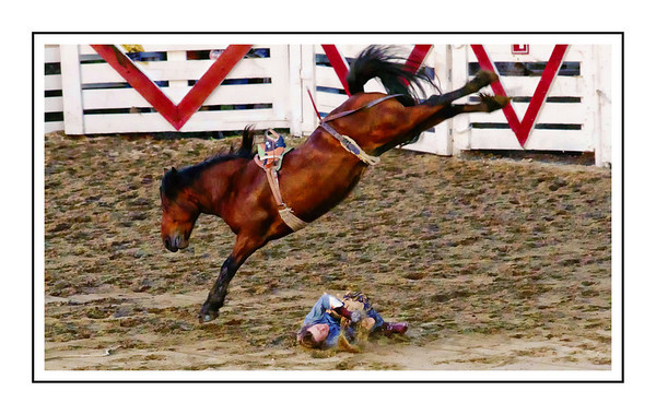 Cowtown Rodeo Sat May 31,2014