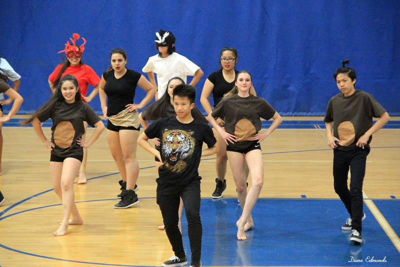 2016-05-07_FVHS Dance Team_Spring Show_2323.JPG<br /> <br /> FVHS Dance Team - Spring Show 2016