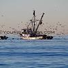 Fishing Boat_3883.JPG
