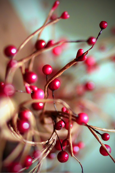 0126 This string of berries as been up since before Christmas....  for some reason I just can't take it down!