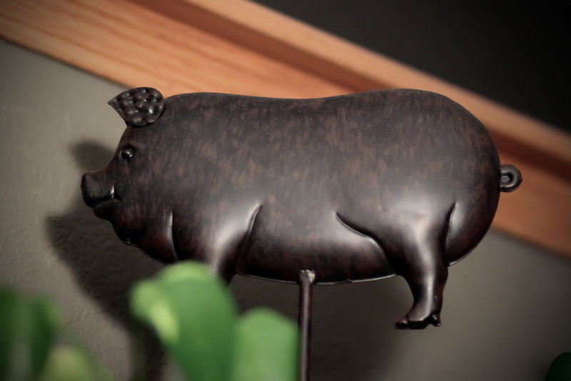 0303 Kitchen pig.
