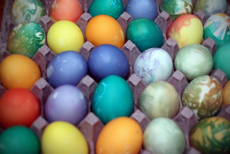 0402 The eggs....