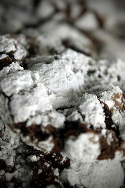 0514 Chocolate Crinkles - Madison's favorite!
