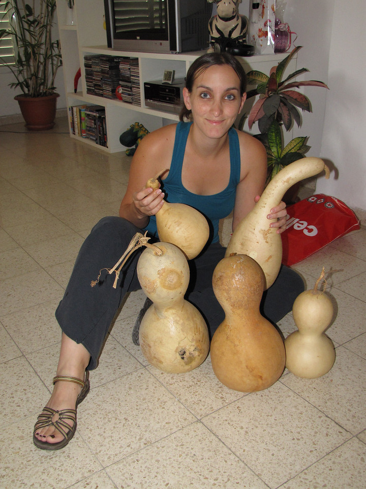 First you'll need a gourd. I got mine from Tomer's aunt who grows them and dries them herself.