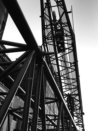 Crane photos Dino