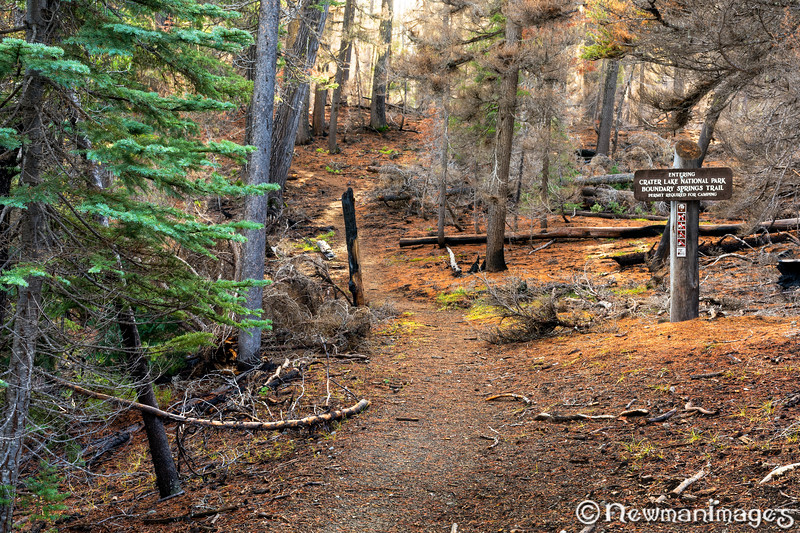Boundary Springs Trail