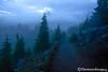 Watchman Mist