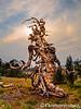 Dancing Tree Goddess
