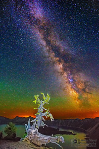 """Withering Starlight,"" the Milky Way over Whitebark Pine, Wizard Island and Crater Lake, Crater Lake National Park"