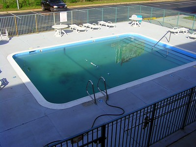 You wouldn't want your dog swimming in this pool.