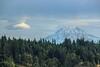 Mt Rainier (5)