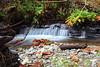 Creek Falls