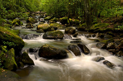 "Jones Gap ""Life Flow"" © Sparkle Clark"