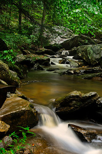 Pearson's Falls III © Sparkle Clark