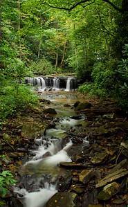 Pearson's Falls I © Sparkle Clark