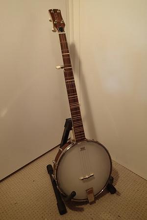 Mum's 60th, 2014 - Banjo