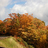 Autumn on the Parkway 2<br /> © Sparkle Clark