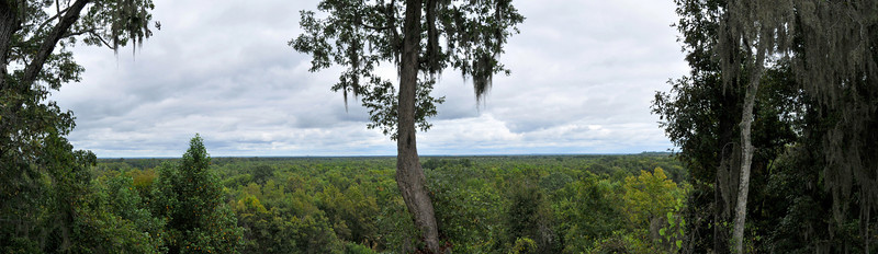 View from Congaree Bluffs Heritage Preserve Observation Deck<br /> © Sparkle Clark