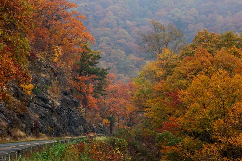 Autumn on the Parkway<br /> © Sparkle Clark
