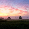 Savannah NWR Foggy Sunrise<br /> © Sparkle Clark