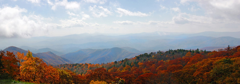 Blue Ridge Parkway Fall Colors II<br /> <br /> © Sparkle Clark