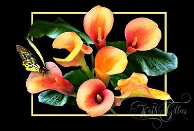 orange lilies 1