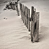 fence on a sand dune