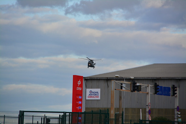 Two Merlins arrive on the Rock