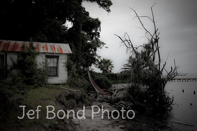 """""""Tin Roof Busted"""" 2011"""