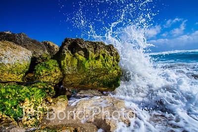 Palm Beach Rock