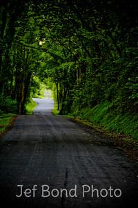 Back Roads of PA