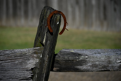 Lucky Old Fence