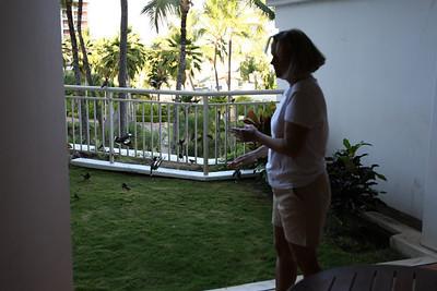 2008-05-10 Maui day 3