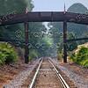 Bridge Color 11x14 Final