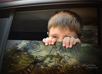 Boy Looking out Car Window at T-Rex Dinosaur