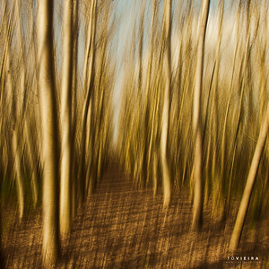 Multiple Exposure (Composite) Individual Layered ICM (2 exposures, 1 layers ICM, 1 layers are not ICM?) #8_ME_Composite_ICM